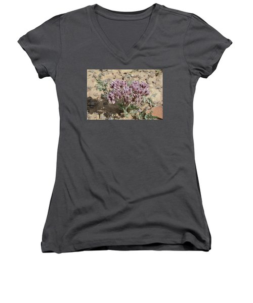 Women's V-Neck T-Shirt (Junior Cut) featuring the photograph Widewing Spring Parsley by Jenessa Rahn