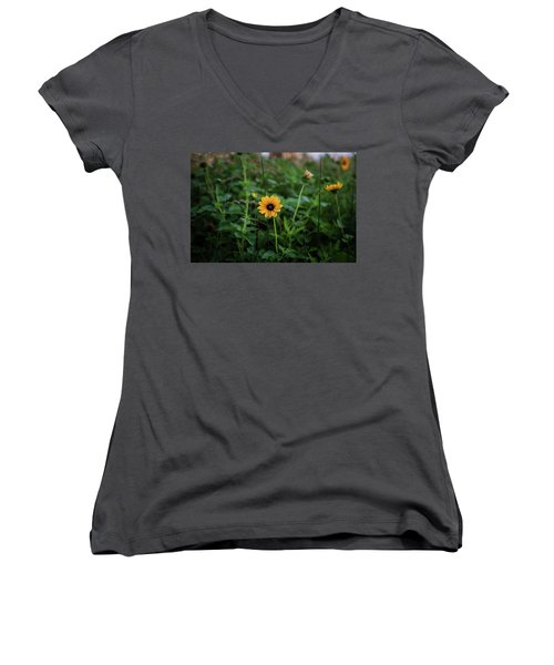 Wild At Hearts And Flowers Women's V-Neck (Athletic Fit)