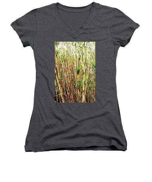 Wild Bamboo Women's V-Neck T-Shirt