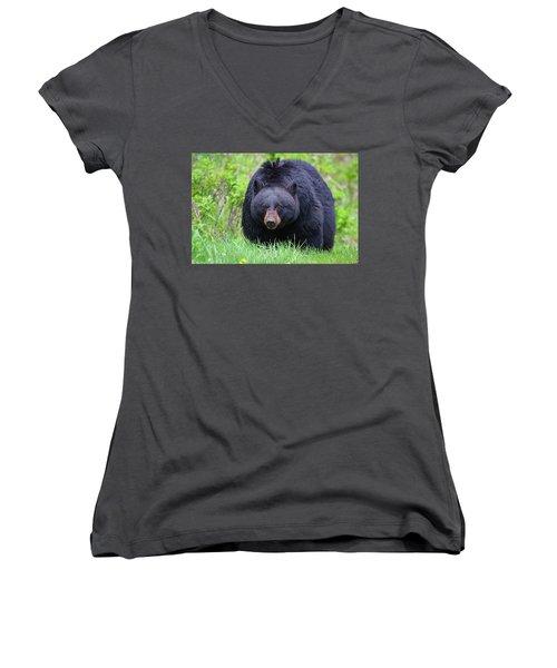 Wild Black Bear Women's V-Neck (Athletic Fit)