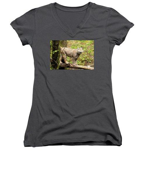 Wild Bobcat In Mountain Setting Women's V-Neck T-Shirt (Junior Cut) by Teri Virbickis