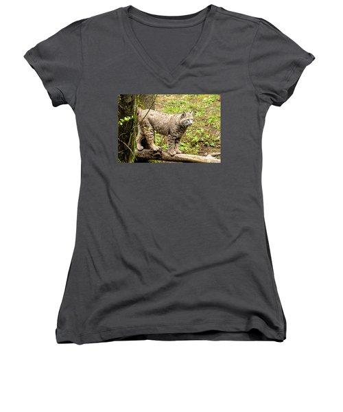 Wild Bobcat Women's V-Neck T-Shirt (Junior Cut) by Teri Virbickis