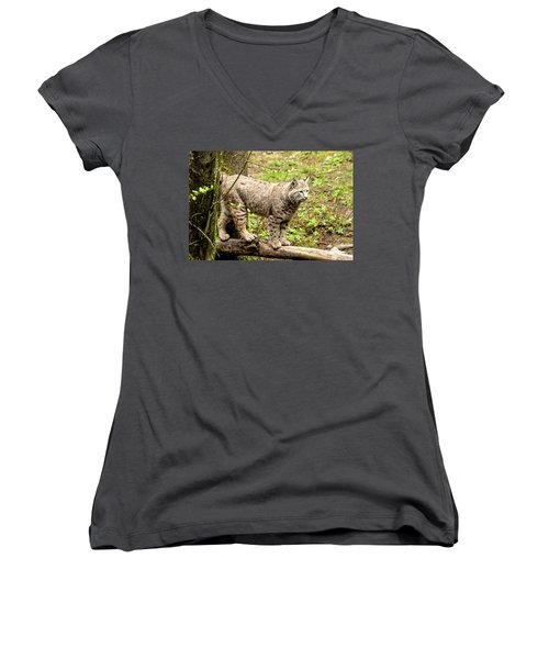 Wild Bobcat Women's V-Neck