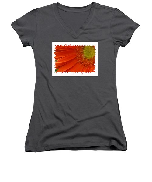 Wild Daisy Women's V-Neck T-Shirt (Junior Cut) by Shari Jardina