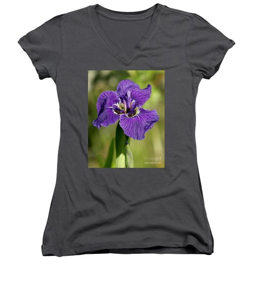 Wild Iris Women's V-Neck (Athletic Fit)