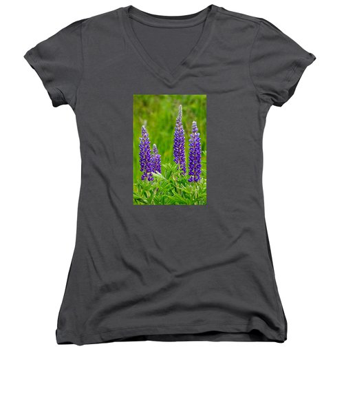 Wild Lupine Women's V-Neck T-Shirt