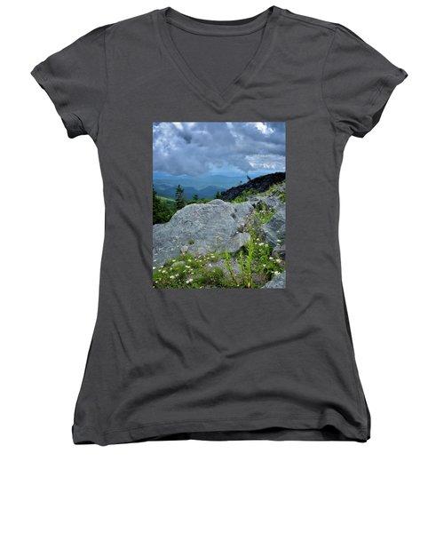 Wild Mountain Flowers Women's V-Neck T-Shirt (Junior Cut) by Steve Hurt