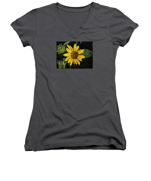 Wild Sunflower Women's V-Neck (Athletic Fit)