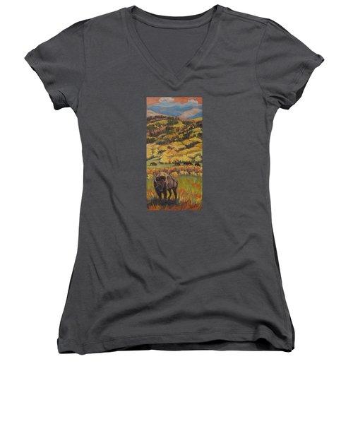 Wild West Splendor Women's V-Neck T-Shirt (Junior Cut)