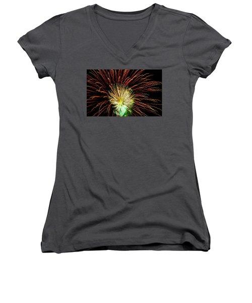 Wild Work Women's V-Neck T-Shirt (Junior Cut) by Michael Nowotny