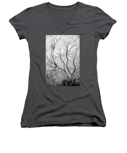 Wildfire Manzanita Women's V-Neck T-Shirt