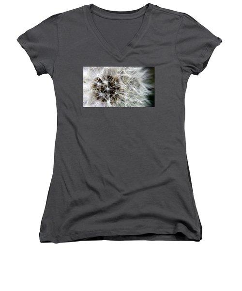 Wildflower 1 Women's V-Neck T-Shirt