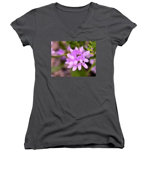 Wildflower Or Weed Women's V-Neck T-Shirt (Junior Cut) by Kathy Eickenberg