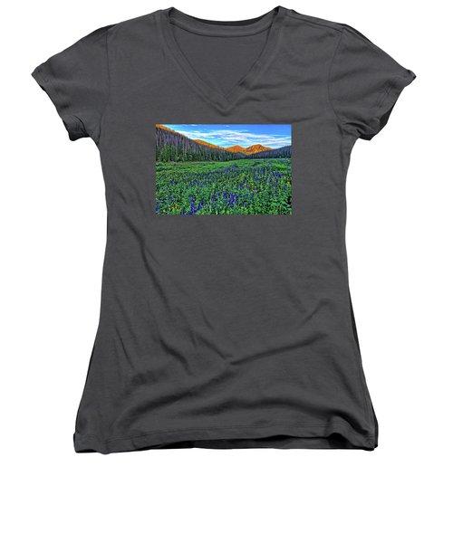 Women's V-Neck T-Shirt (Junior Cut) featuring the photograph Wildflower Park by Scott Mahon