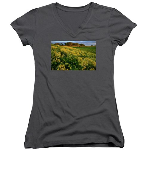 Wildflowers In Hackmatack National Wildlife Refuge Women's V-Neck (Athletic Fit)