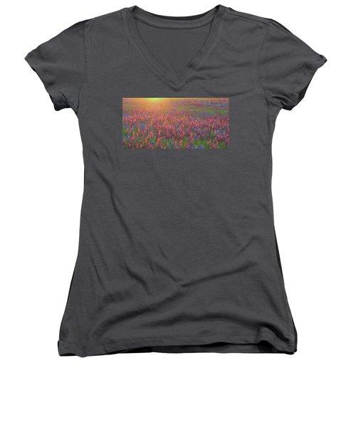 Wildflowers In Texas Women's V-Neck