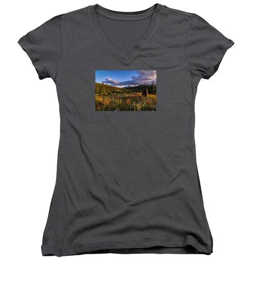 Wildflowers In The Evening Sun Women's V-Neck T-Shirt (Junior Cut) by Michael J Bauer