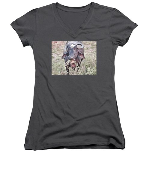 Wilds Of Buffalo Women's V-Neck (Athletic Fit)