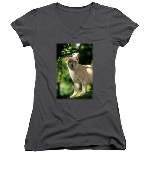 Wilham Women's V-Neck T-Shirt (Junior Cut) by Jon Delorme