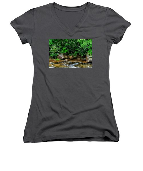 Williams River And Rhododdendron Women's V-Neck