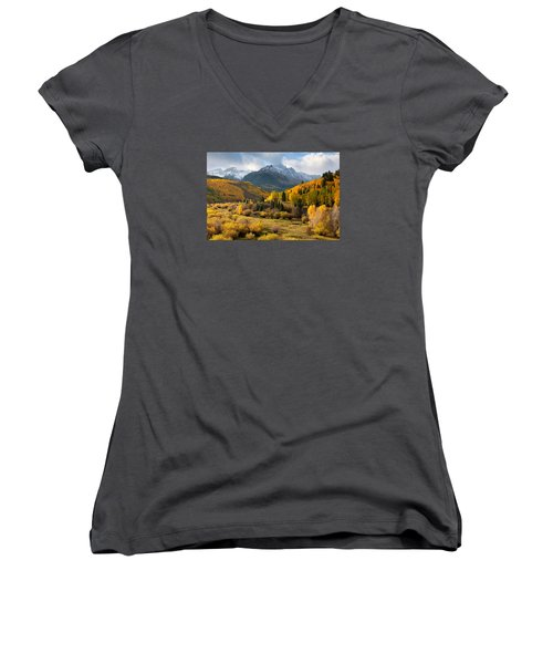 Willow Swamp Women's V-Neck T-Shirt