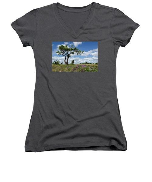 Windblown Women's V-Neck T-Shirt (Junior Cut) by Kennerth and Birgitta Kullman
