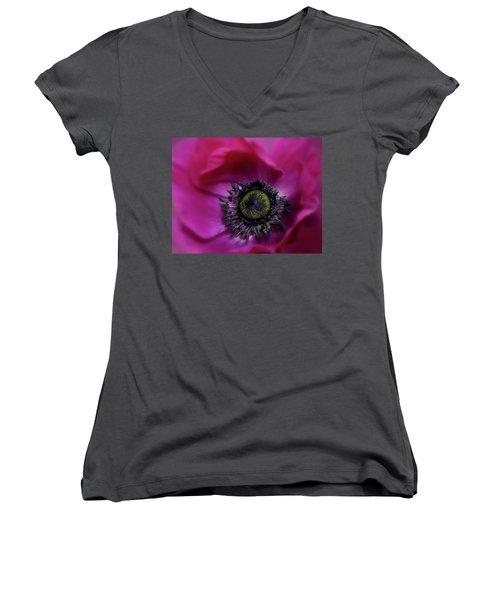 Windflower Women's V-Neck T-Shirt