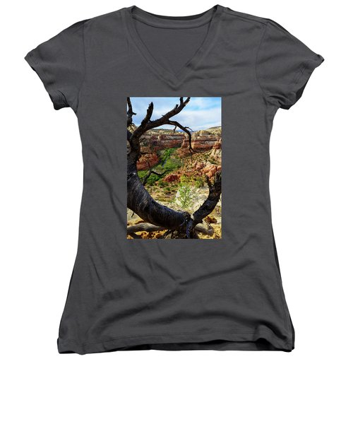 Women's V-Neck T-Shirt (Junior Cut) featuring the photograph Window by Chad Dutson