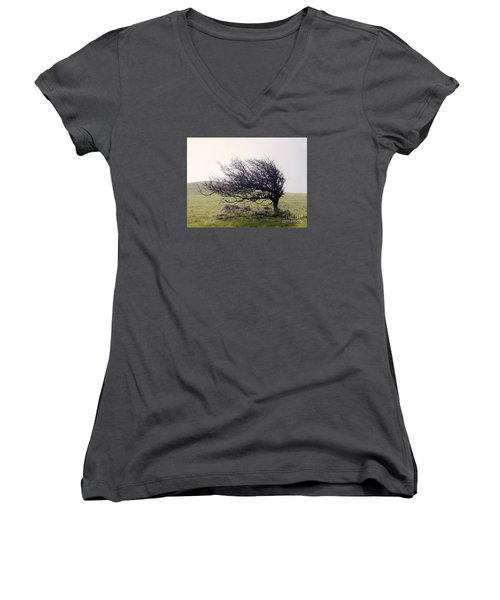 Windswept Tree Women's V-Neck