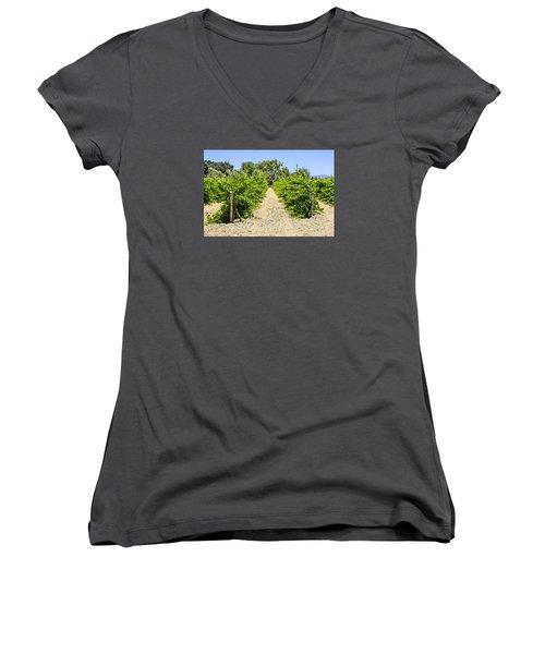 Wine On The Vine Women's V-Neck T-Shirt (Junior Cut) by Chris Smith