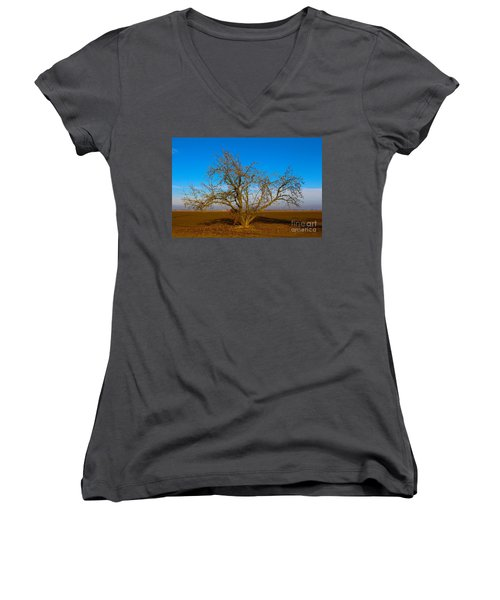 Winter Apple Tree Women's V-Neck