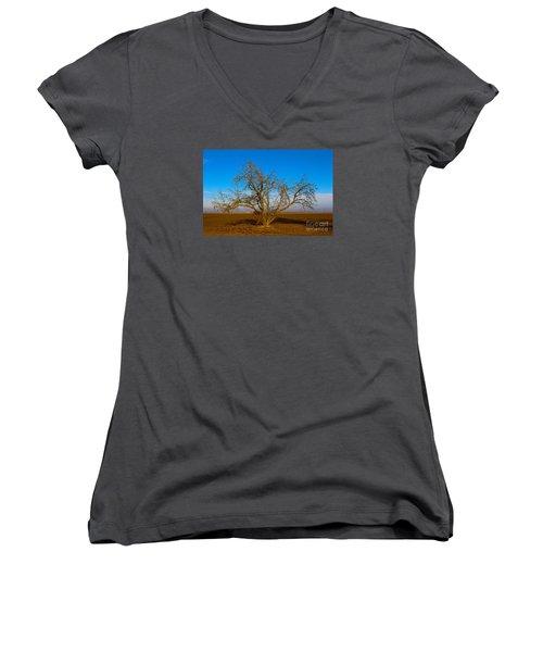 Winter Apple Tree Women's V-Neck T-Shirt