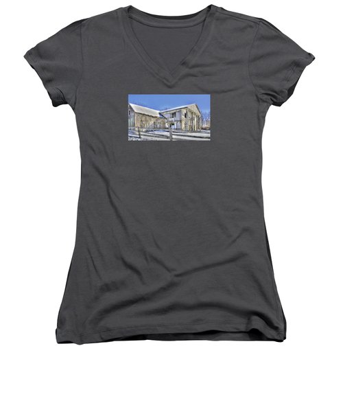 Winter Barn 2 Women's V-Neck