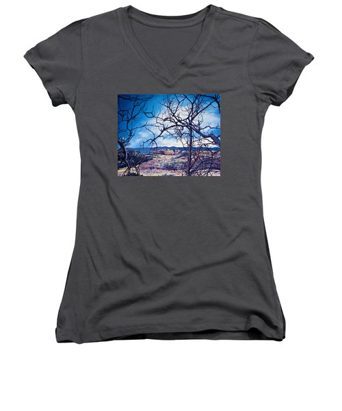 Winter Branches Women's V-Neck (Athletic Fit)