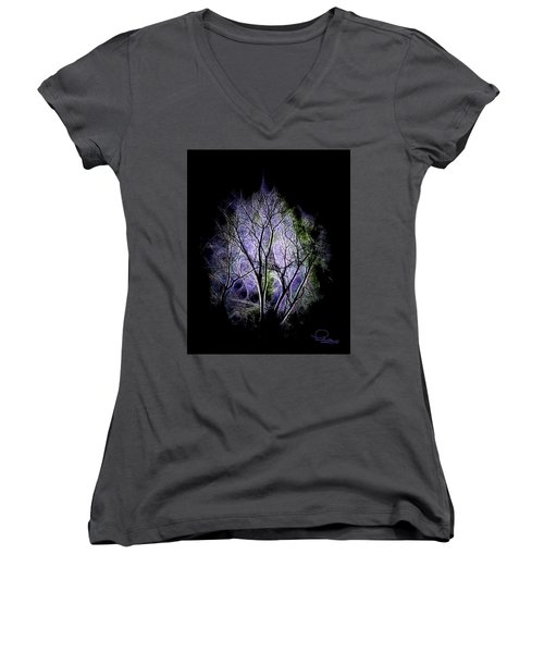 Winter Dream Women's V-Neck T-Shirt (Junior Cut) by Ludwig Keck