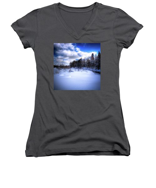 Women's V-Neck T-Shirt (Junior Cut) featuring the photograph Winter Highlights by David Patterson