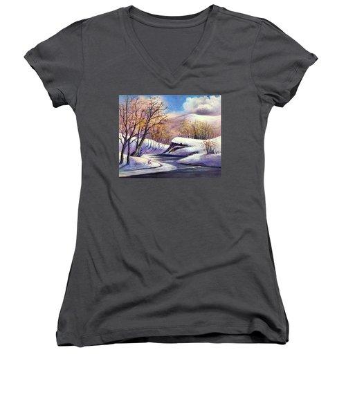 Winter In The Garden Of Eden Women's V-Neck T-Shirt (Junior Cut) by Randy Burns