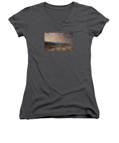 Winter In The Wetlands Women's V-Neck (Athletic Fit)