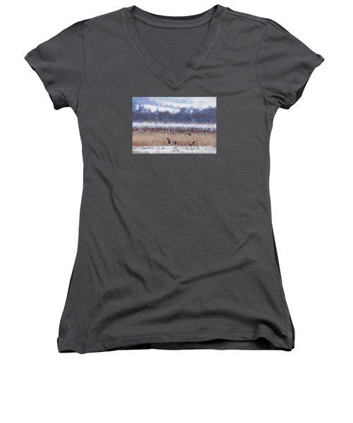 Winter Lapwings Women's V-Neck T-Shirt (Junior Cut) by Liz Leyden