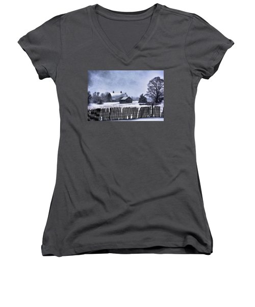 Winter Women's V-Neck (Athletic Fit)