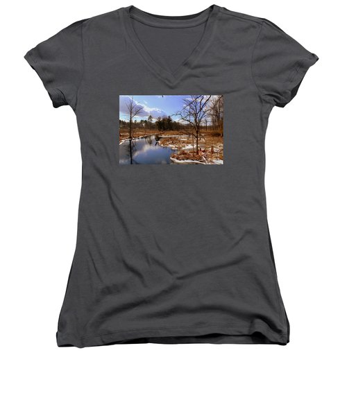 Winter Marsh Women's V-Neck (Athletic Fit)