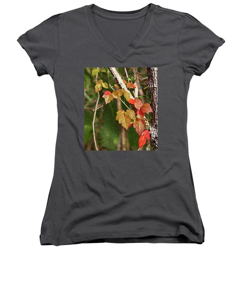 Winter On Gillot Blvd. Pt. Charlotte,fl Women's V-Neck (Athletic Fit)