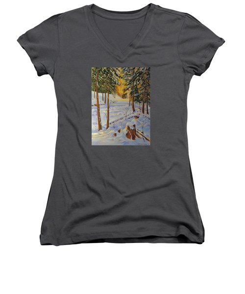 Winter On The Lane Women's V-Neck T-Shirt (Junior Cut) by David Gilmore