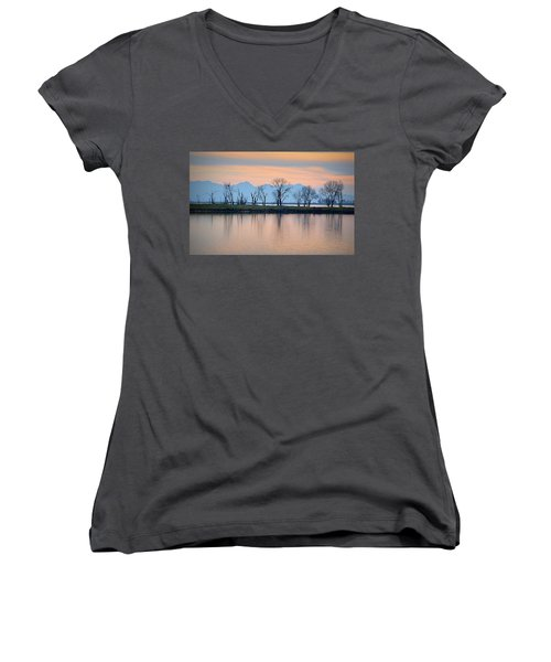 Winter Reflections Women's V-Neck (Athletic Fit)