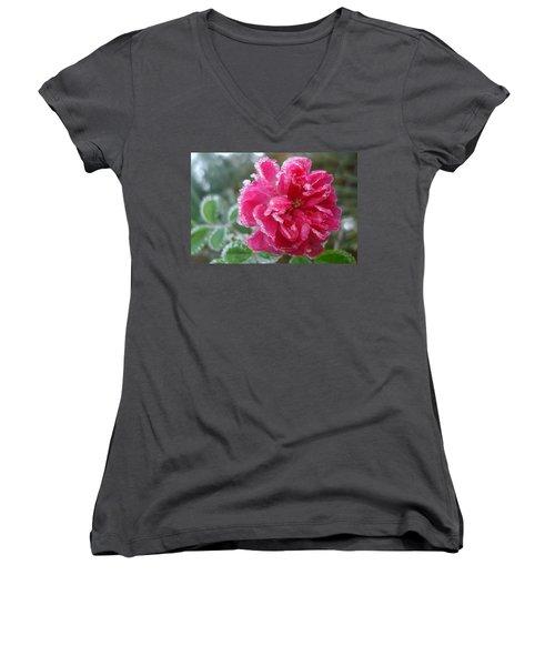 Winter Rose Women's V-Neck T-Shirt