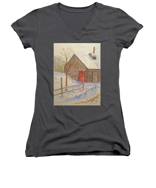 Winter Sugar House Women's V-Neck