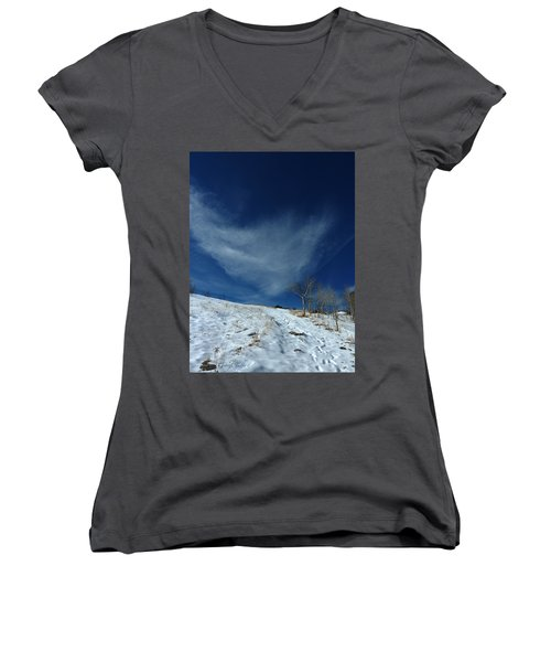 Winter Walk Women's V-Neck T-Shirt