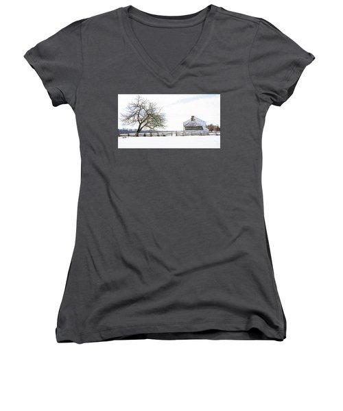 Winter White Out Women's V-Neck T-Shirt (Junior Cut)