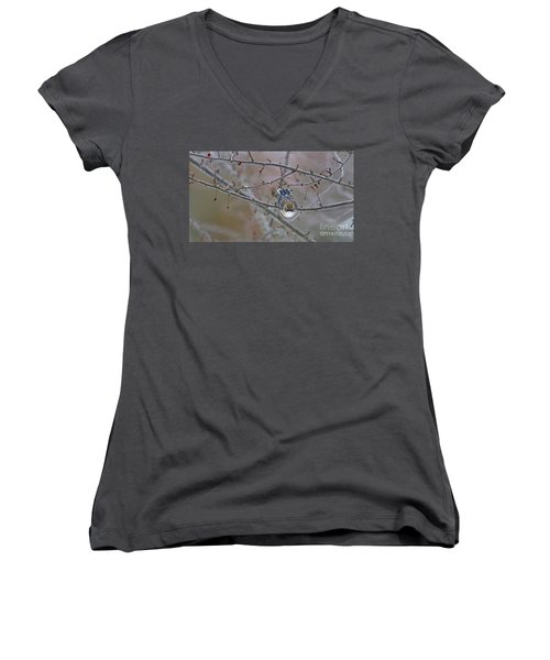 Winter Yellow-rumped Women's V-Neck (Athletic Fit)
