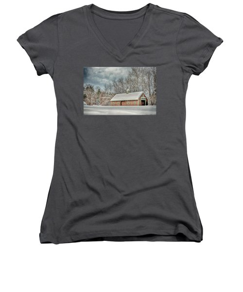 Winters Coming Women's V-Neck T-Shirt (Junior Cut) by Tricia Marchlik